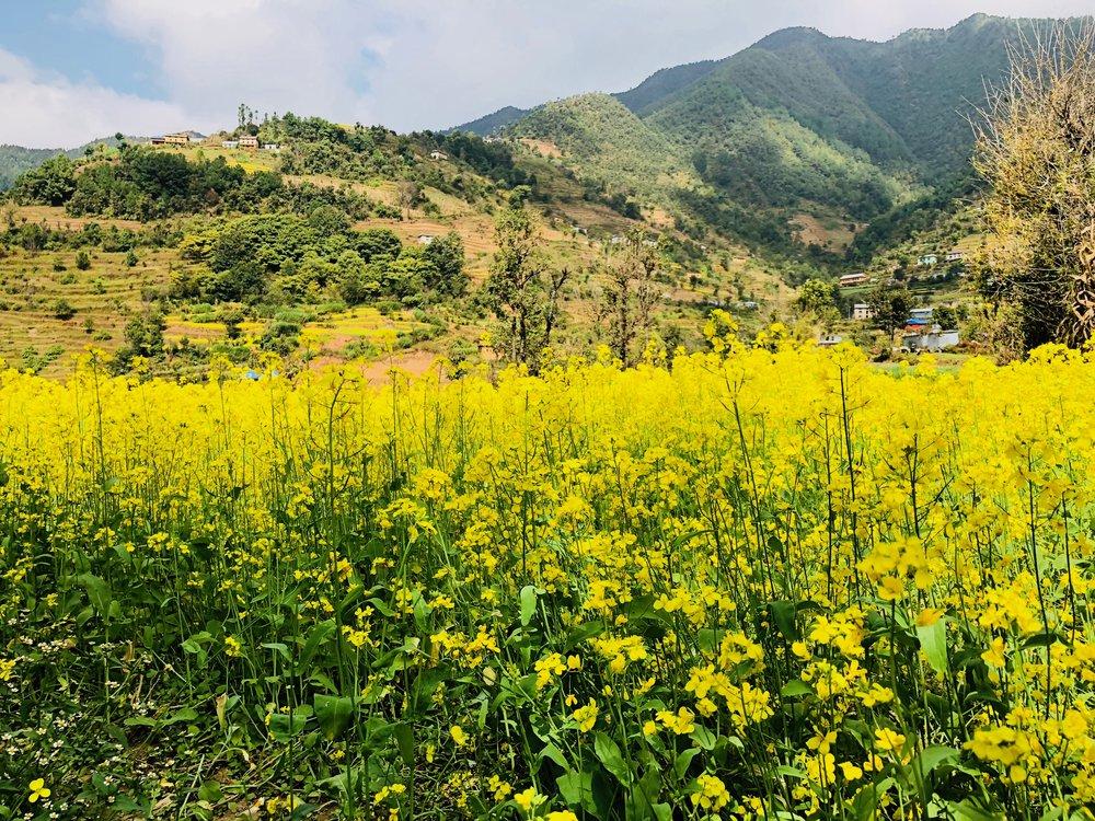 Kathmandu valley(2).jpg