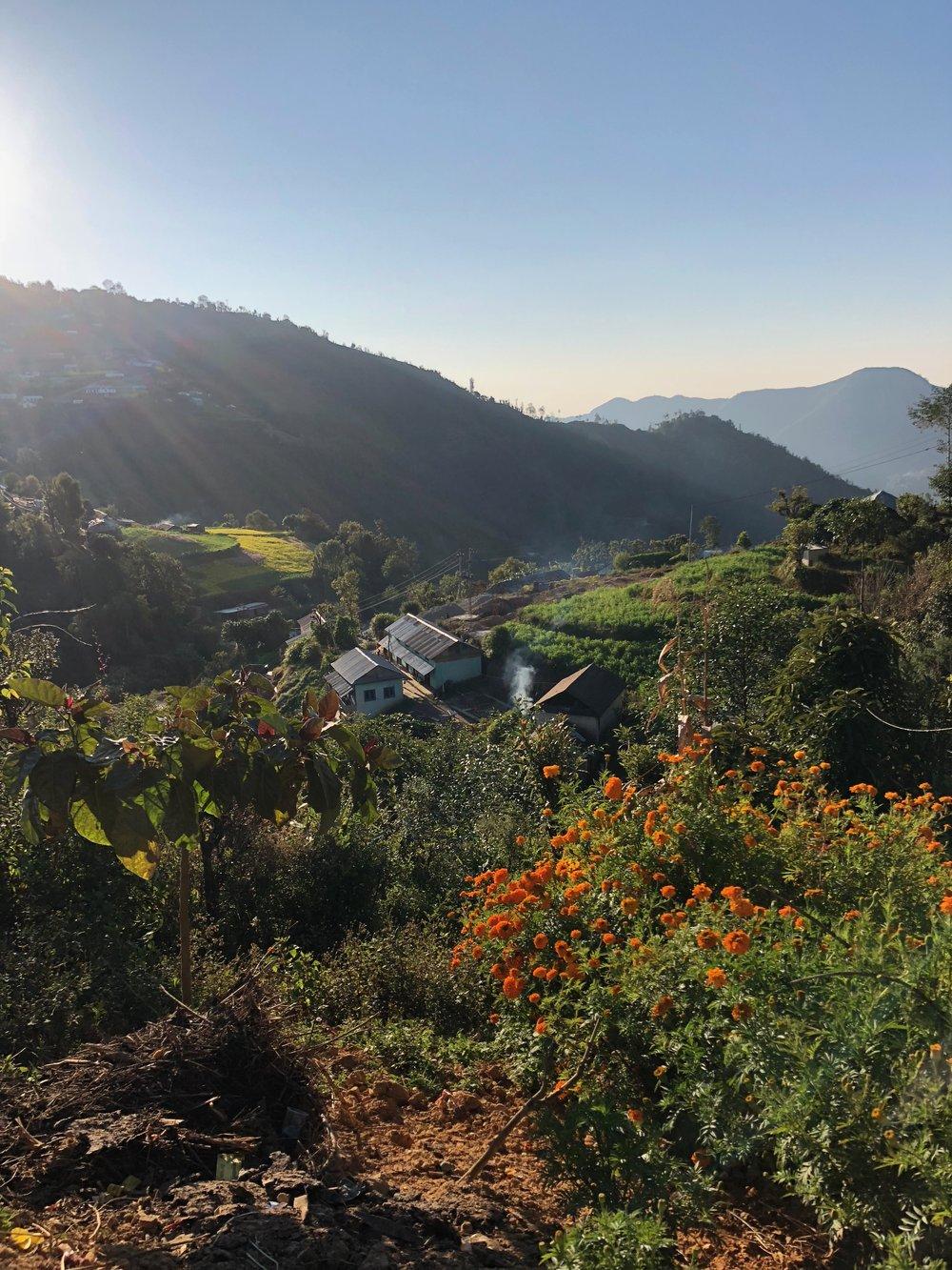 trekking in kathmandu valley(1).jpg