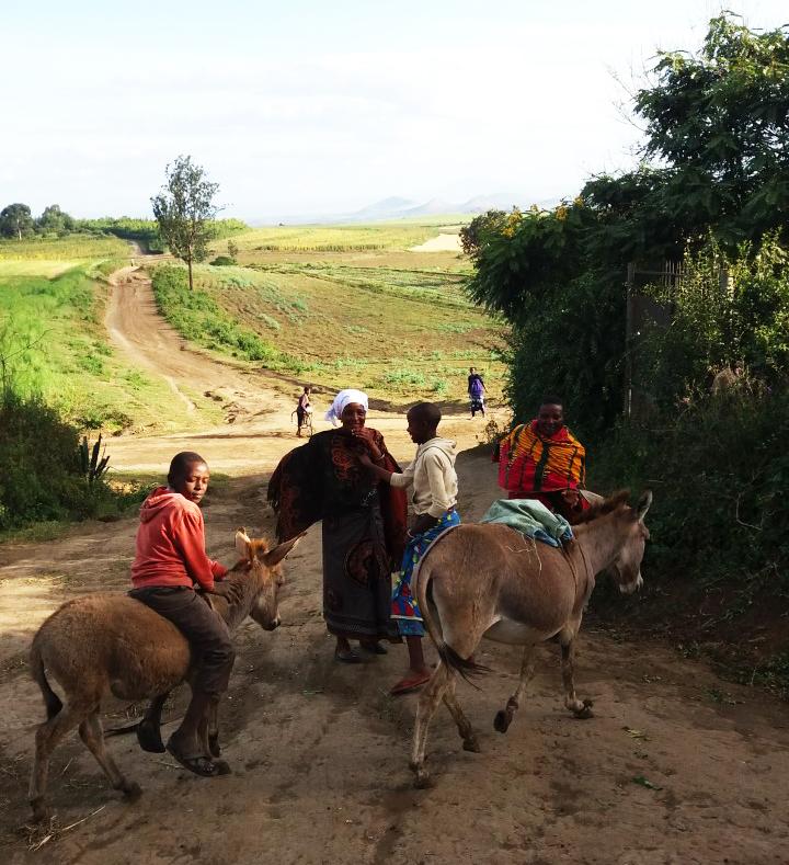 Likamba is a Maasai village
