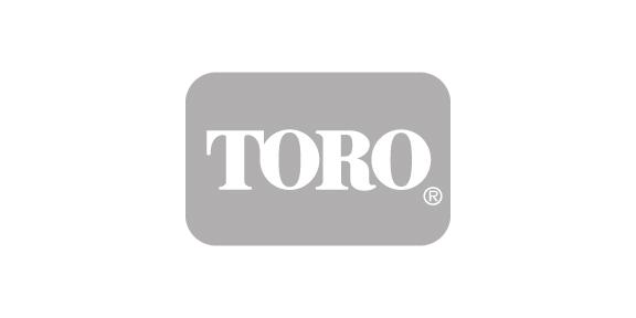 NY15_toro.jpg