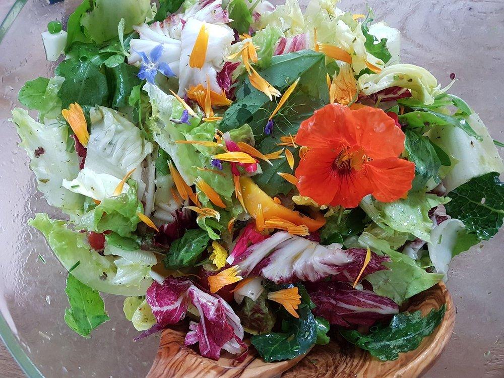 Salat-Brunnenkresse.jpeg