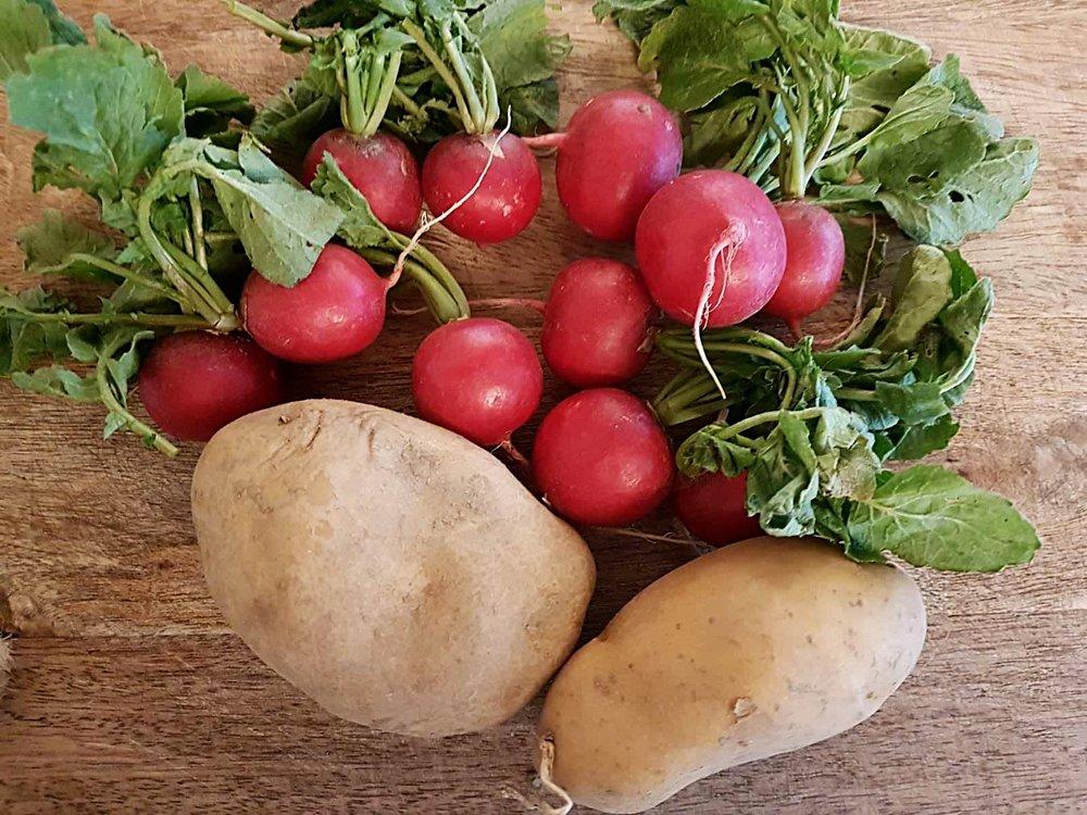 Radieschen_Kartoffeln