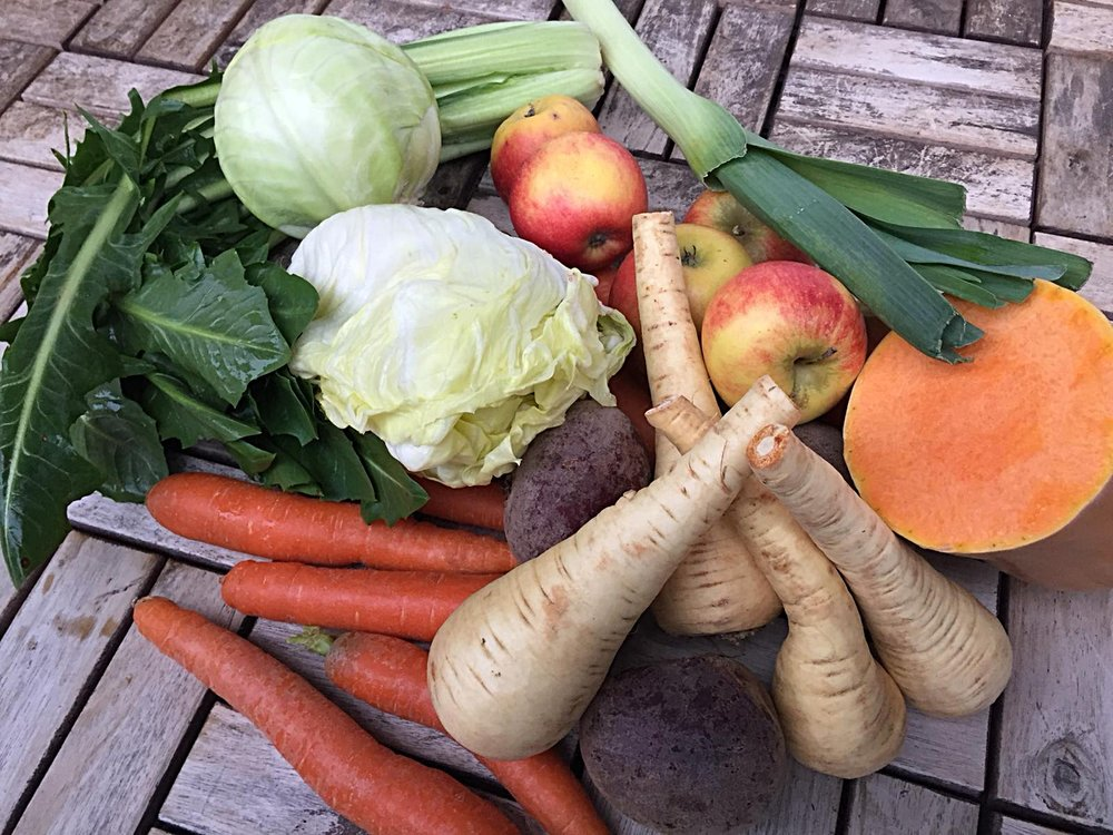 Gemüse-Biopac