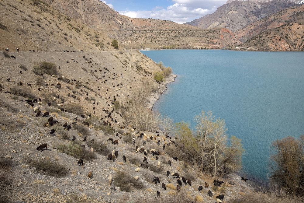 20180408_Tajikistan_Lake_Iskanderkul_03.jpg