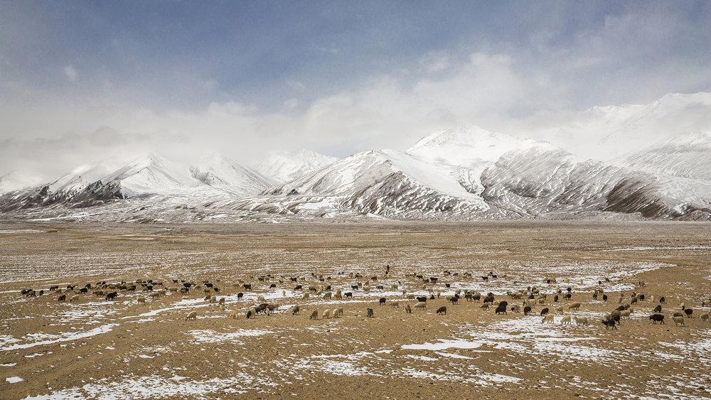 Tajikistan - a roadtrip