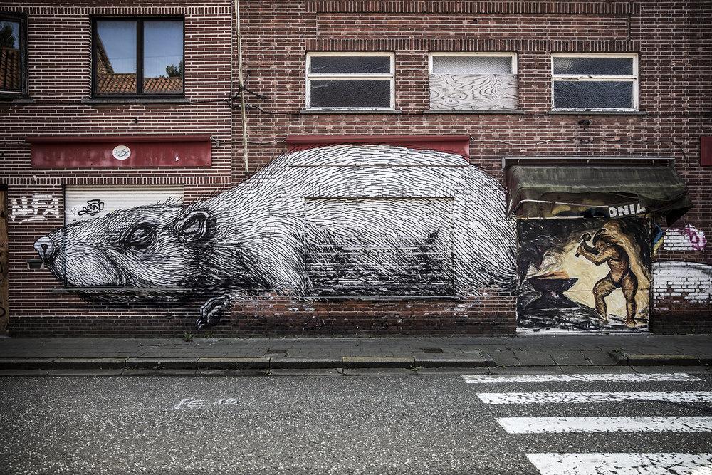 2014_Doel_Antwerp_Belgium_15.jpg