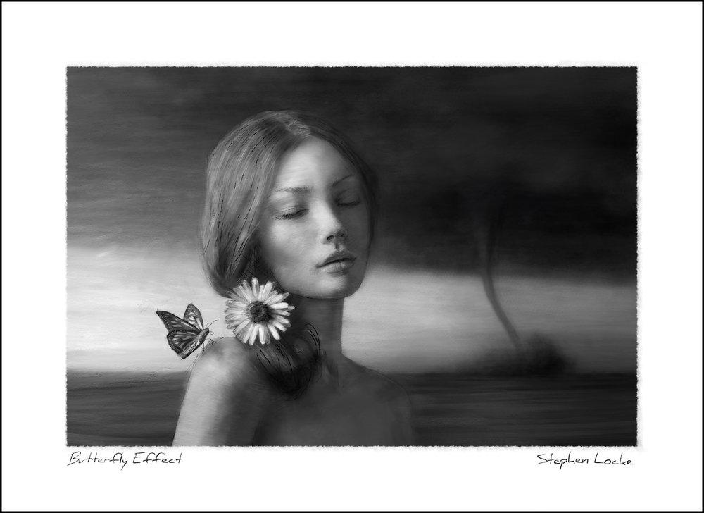 Butterfly Effect by Stephen Locke