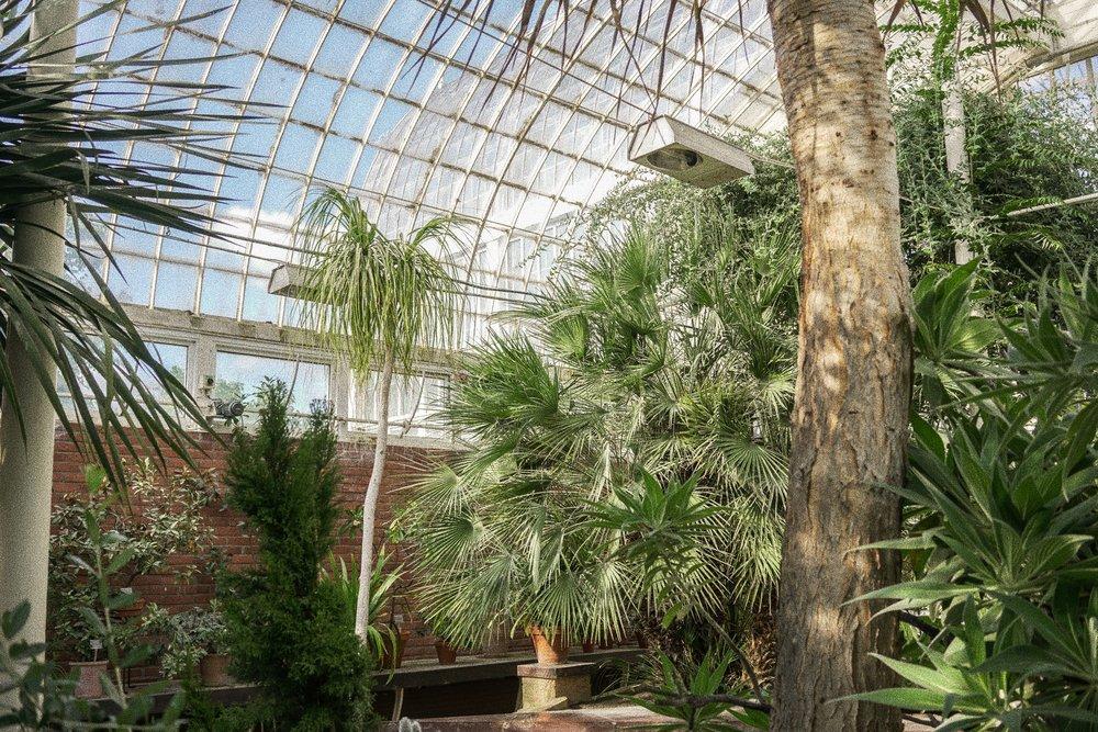 Gothenburg Botanical Garden
