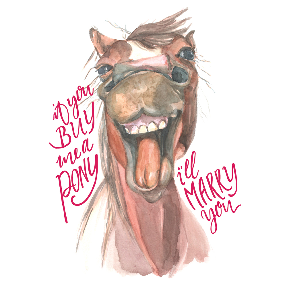 Pony Illustration