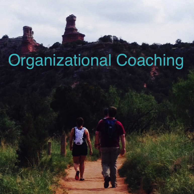Organizational Coaching.  Defy Impossibility, Together.