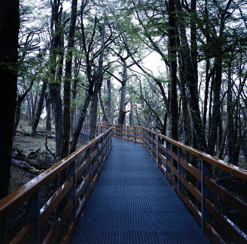 The walkways around Perito Moreno Fuji GF670w - Kodak Vericolor
