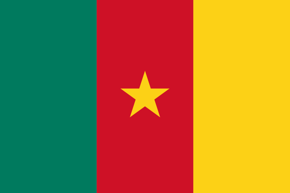 Flag of Camaroon, Africa