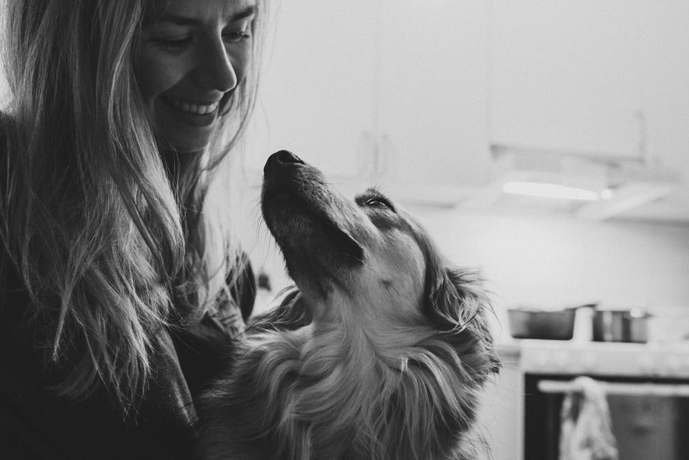 Familj. Augusti 2018 adopterade vi lilla Ollie från Irland med hjälp av Hundar utan hem, en organisation som jag och så med Seos Fotografi stöttar aktivt. #rescuemom