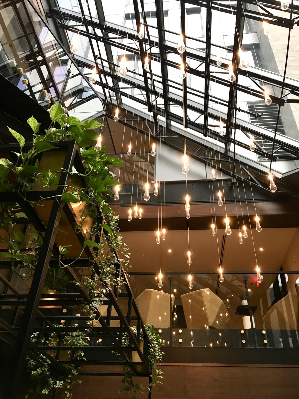 Atrium in Hotel William Gray