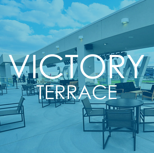 THE_TERRACE_BOX1.jpg