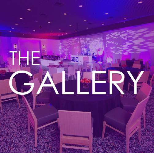 THE_GALLERY_BOX1.jpg