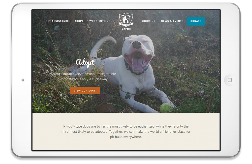 born again pit Bull rescue - Building a new site for people who want to help dogs.
