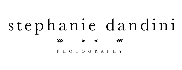 Stephanie Dandini Photography