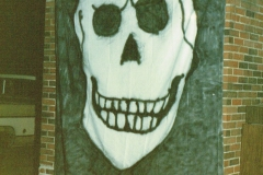 The Party Room Skull