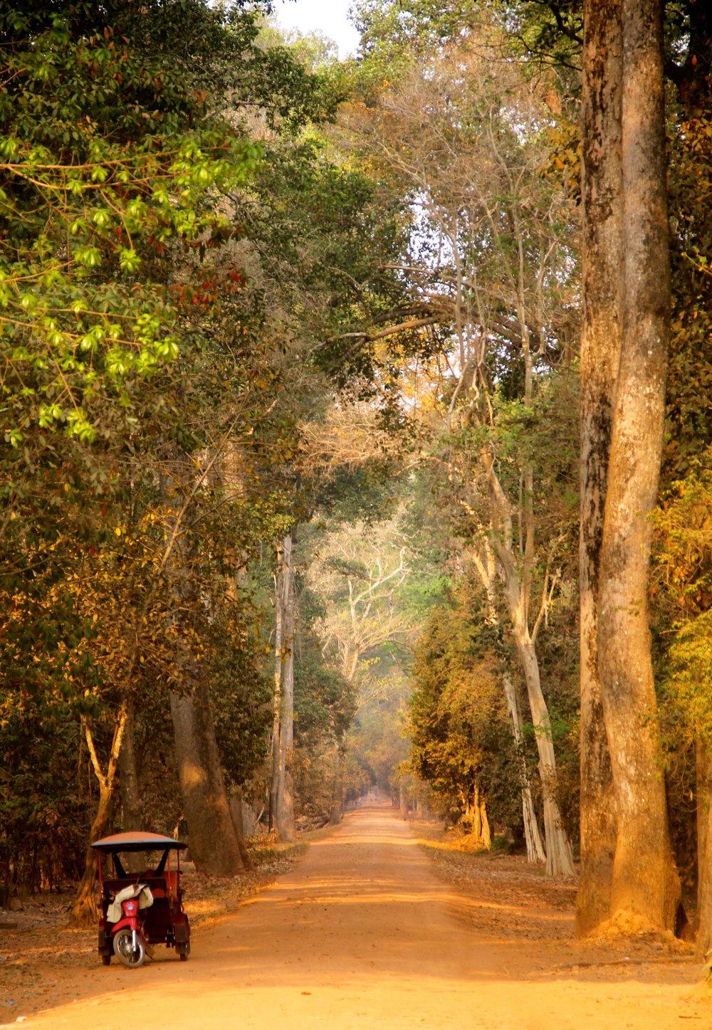 Angkor Archeological Park, Siem Reap, Cambodia