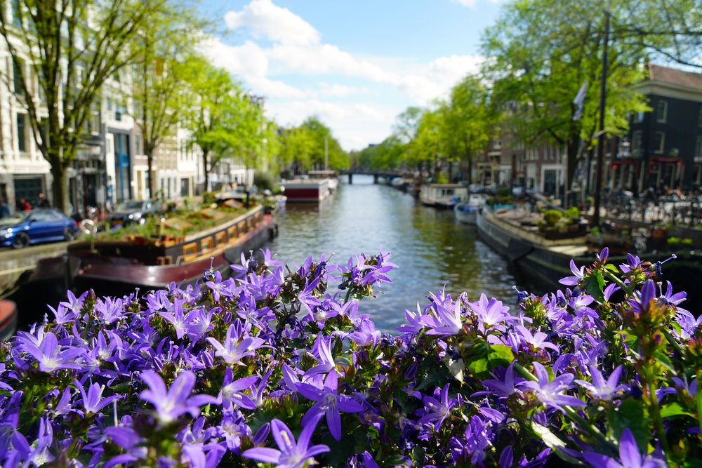 Canals, Amsterdam, Netherlands