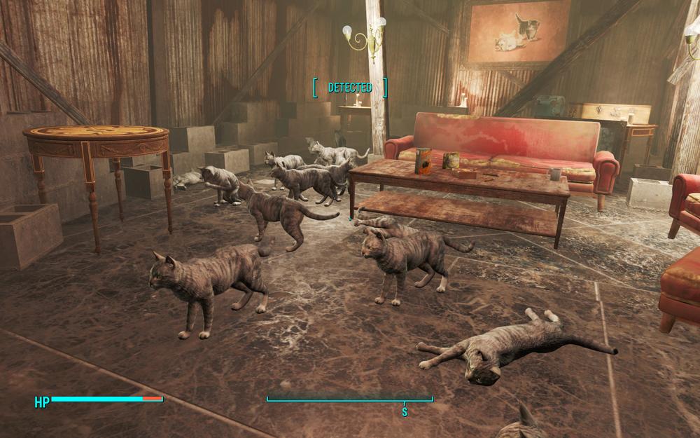 Cat Room.png