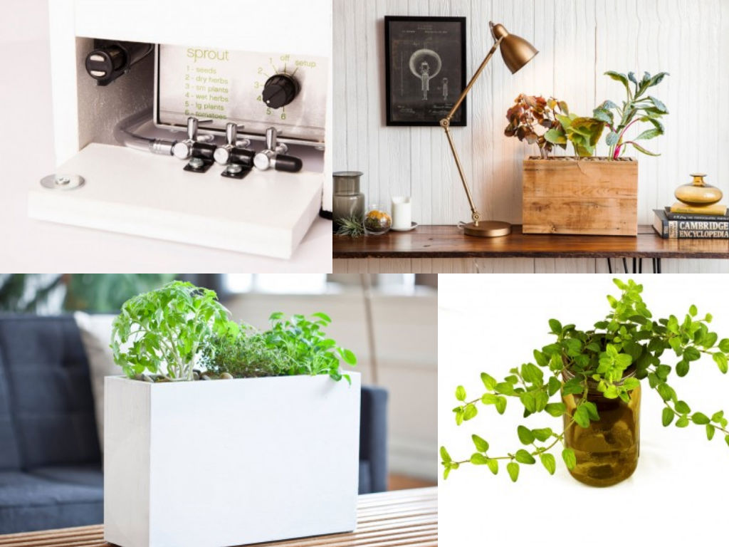 Modern Sprout Planter 1
