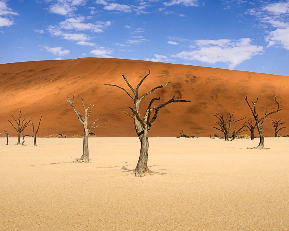 Namibia 06 May 2014-37-MasterFile.jpg