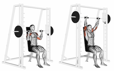 Smith Machine Shoulder Press.jpg