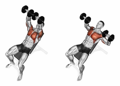Incline Dumbbell Chest Press