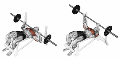 Decline Barbell Chest Press