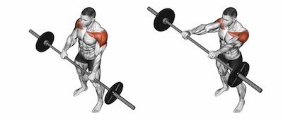 Standing Barbell Front Raises