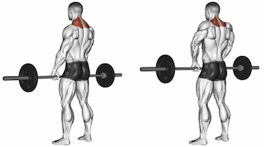 Standing Front Barbell Shrugs