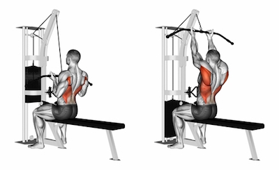 Narrow Underhand Grip Lat Pulldown