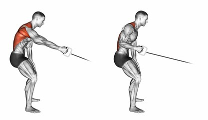 Standing One Arm Cable Rows