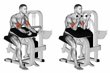 Biceps Curl Machine