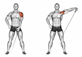 Standing One Arm Cable Lateral Raises