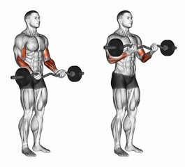 Wide Grip Standing EZ Bar Curls