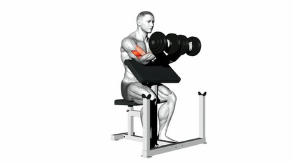 Two Arm Dumbbell Biceps Preacher Curl