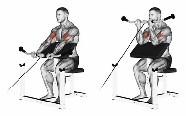 Cable Biceps Preacher Curl