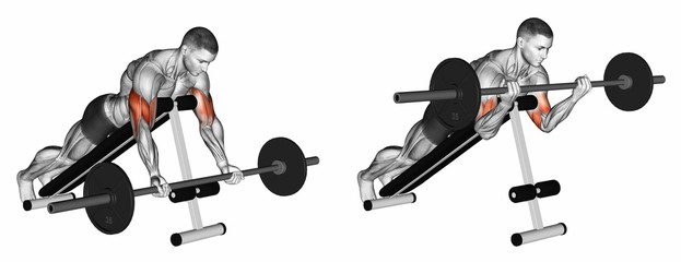 Lying Incline Barbell Biceps Curl