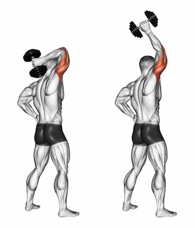 Standing One Arm Overhead Triceps Extensions