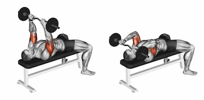 Lying Barbell Triceps Extensions