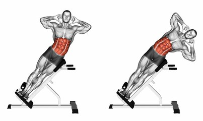 Reverse Hollow Hold Exercise Database - Ab...