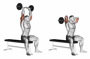 Seated Overhead Barbell Triceps Extension.jpg