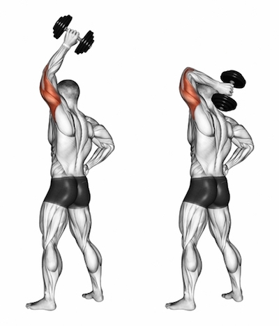 One Arm Overhead Standing Triceps Extensions