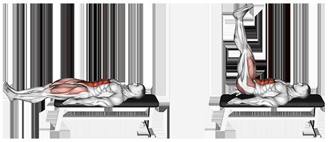 Image result for Lying Leg Raises