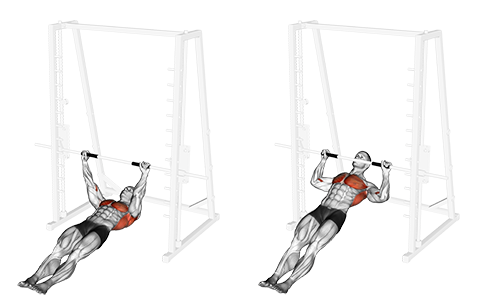 O   verhand Grip Inverted Back Row