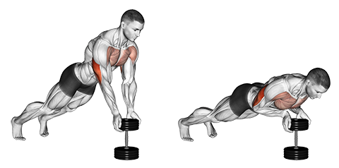 Close Grip Dumbbell Push Ups