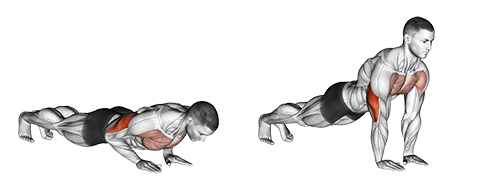 Narrow-Hand Push Ups